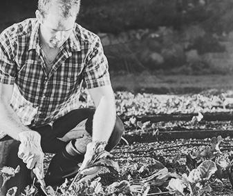 agricoltura_sociale_04