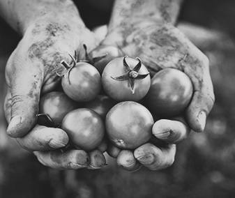 agricoltura_sociale_06